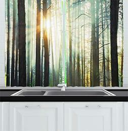 Ambesonne Nature Kitchen Curtains, Mist in The Enchanted For