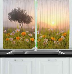 Ambesonne Nature Kitchen Curtains, Daisy Flowers Meadow with