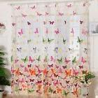 Curtains Room Butterfly Print Sheer Window Panel Divider Liv