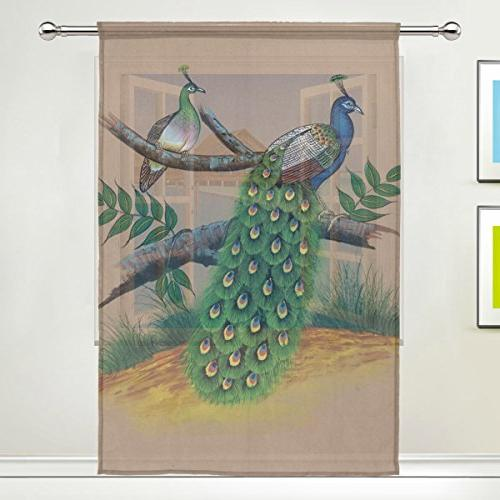 peacock painting sheer curtain panels